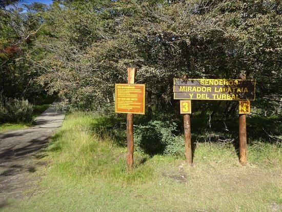Parque-Nacional-Tierra-del-Fuego-19
