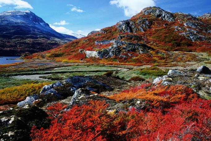 Parque-Nacional-Tierra-del-Fuego-25