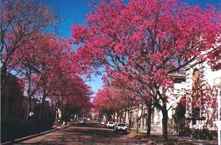 ciudades-de-argentina-26