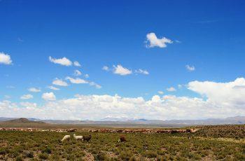 clima de argentina
