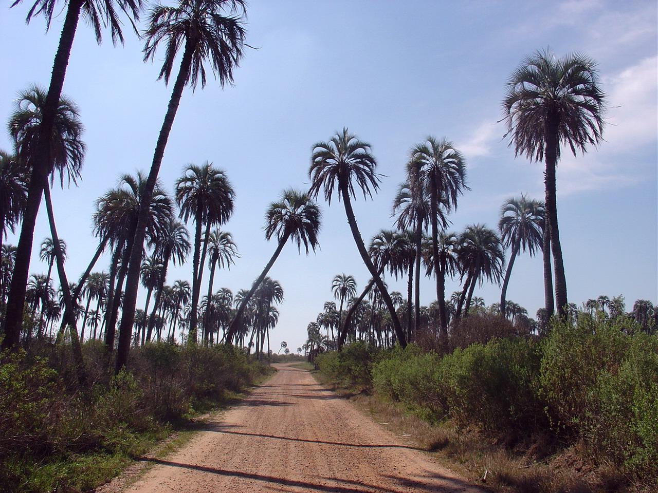 Colon-Entre-Rios-