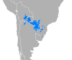 Idioma-de-Argentina-5