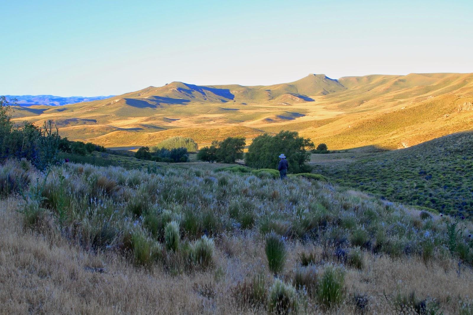 Junin-de-los-Andes
