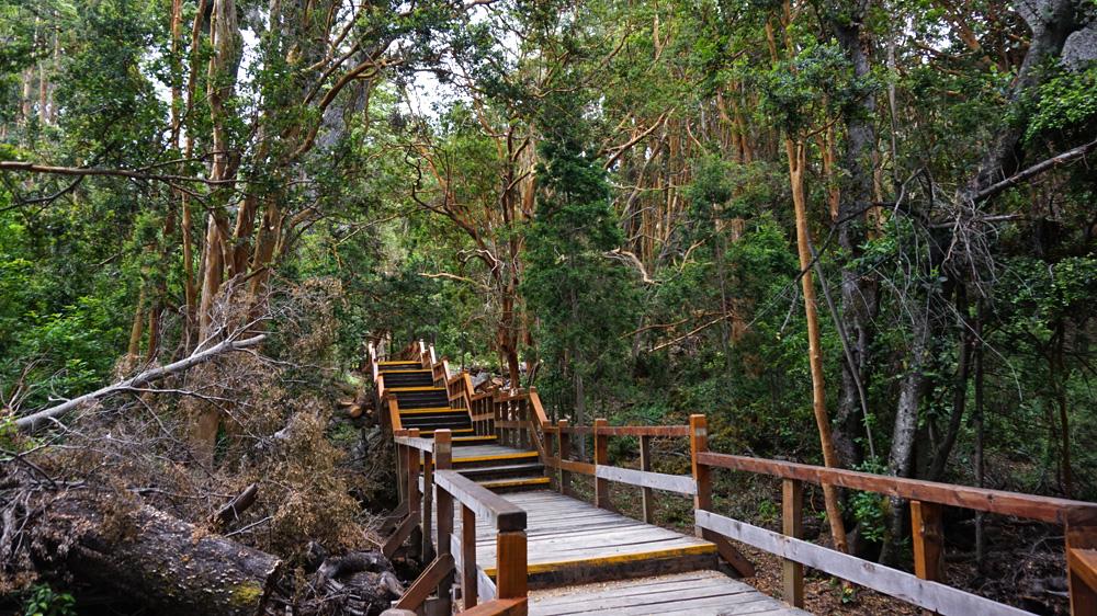 Parque-Nacional-los-Arrayanes-4