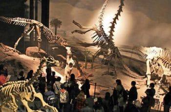 Mendoza, para visitar los yacimiento de huellas prehistóricas